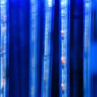Blue Verticals by appfoto