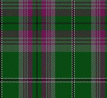 00055 Gray Clan (Hunting) Tartan Fabric Print Iphone Case by Detnecs2013