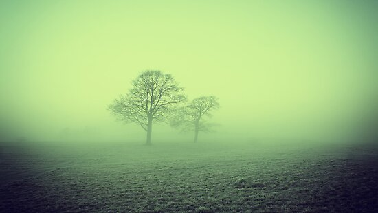 Foggy Morning 4 by riotphoto