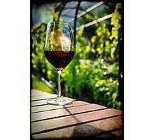 At Herzog winery Photographic Print
