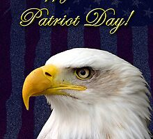Patriot Day Eagle by jkartlife