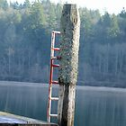 Wooden Post W/ Ladder by HacksonStudios