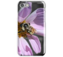 Bumble Bee On Cosmos iPhone Case/Skin