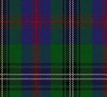 00071 Wood Clan Tartan Fabric Print Iphone Case by Detnecs2013