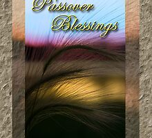 Passover Blessings Grass Sunset by jkartlife