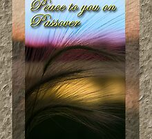 Peace To You On Passover Grass Sunset by jkartlife