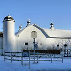 Rural Winter Whites by Gene Walls