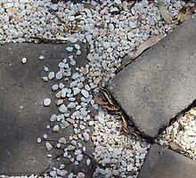 Stepping Stones by Karen Carlisle