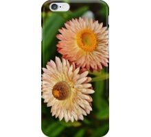 Peach Strawflowers iPhone Case/Skin