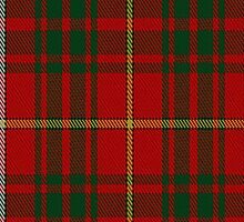 00085 Bruce Clan Tartan Fabric Print Iphone Case by Detnecs2013
