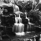 Burrong Falls. by Bette Devine