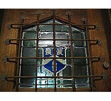 Glass Window on Front Door, Kips Castle Photographic Print