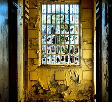 Decay - Block for the Criminally Insane - Morriset NSW Australia by Bev Woodman