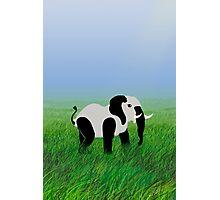Panda-Phant in the Prairie Photographic Print