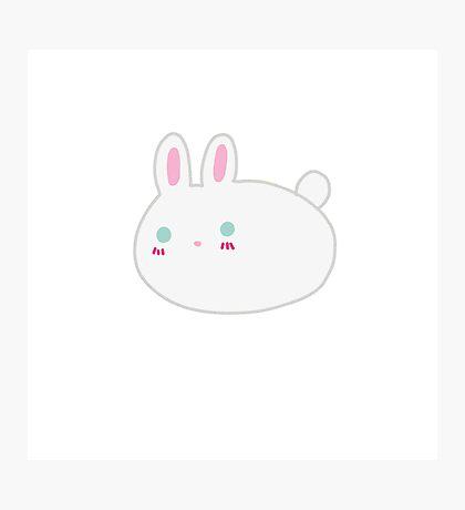 Blushing Bunny Photographic Print