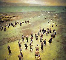 Sea creatures  by Adrian Donoghue