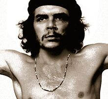 Che Morrison by Tim Norton