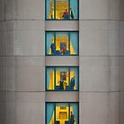 Six storeys, four stories. by Adrian Donoghue