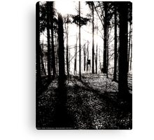 Deer stands in the woods Canvas Print