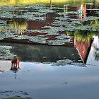Lake Lillanonah Reflections by Clarkartusa
