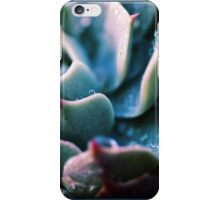 There's Glory in the Little Things iPhone Case/Skin