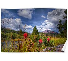 North Sister ~ Indian Paintbrush ~ Poster