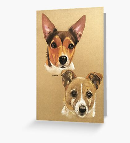 Winnie & Belle the adorable JRTs Greeting Card