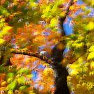 Fall impression 10 - 2012 by Joseph Rotindo