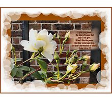 WHITE ROSES WITH WALL (BIBLE VERSE) Photographic Print