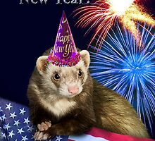New Years Ferret by jkartlife