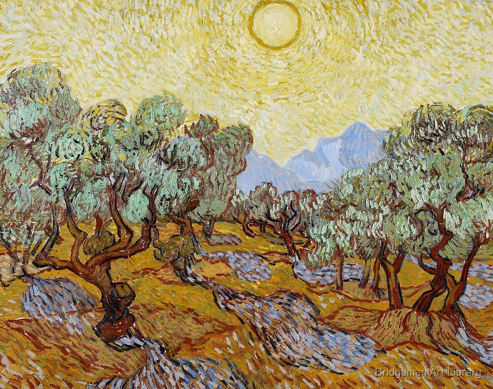 Olive Trees, 1889 by Bridgeman Art Library