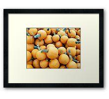 Pick a Pumpkin Framed Print