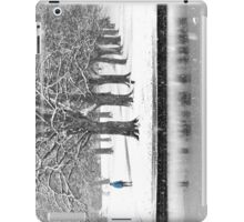 Winter Blues iPad Case/Skin