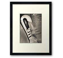 Climbing the Cupola (Dome) Framed Print
