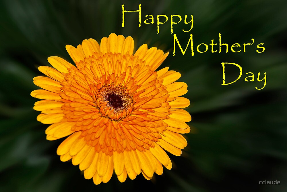 Yellow Flower - Mother's Day card by cclaude