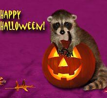 Halloween Raccoon by jkartlife