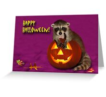 Halloween Raccoon Greeting Card