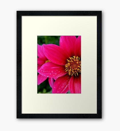Turn the pages back in time.. Through the chapters in my mind..Life's too short to leave behind Framed Print