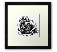 Rose Tattoo Too - Ink Drawing Framed Print