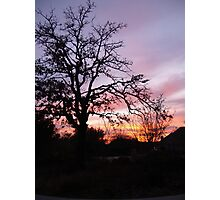 Sun Sets in Suburbia  Photographic Print