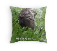 Love Is? Throw Pillow