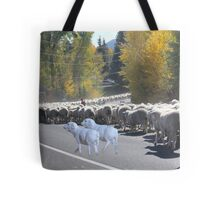 """Whadda ya mean you want to go back…..can't you read the sign????  It says 'No Ewe Turn"""" ! Tote Bag"""