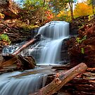 Shawnee Falls Under Fall's Colors by Gene Walls