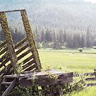 Old Farm by Kaylee Uhlenkott