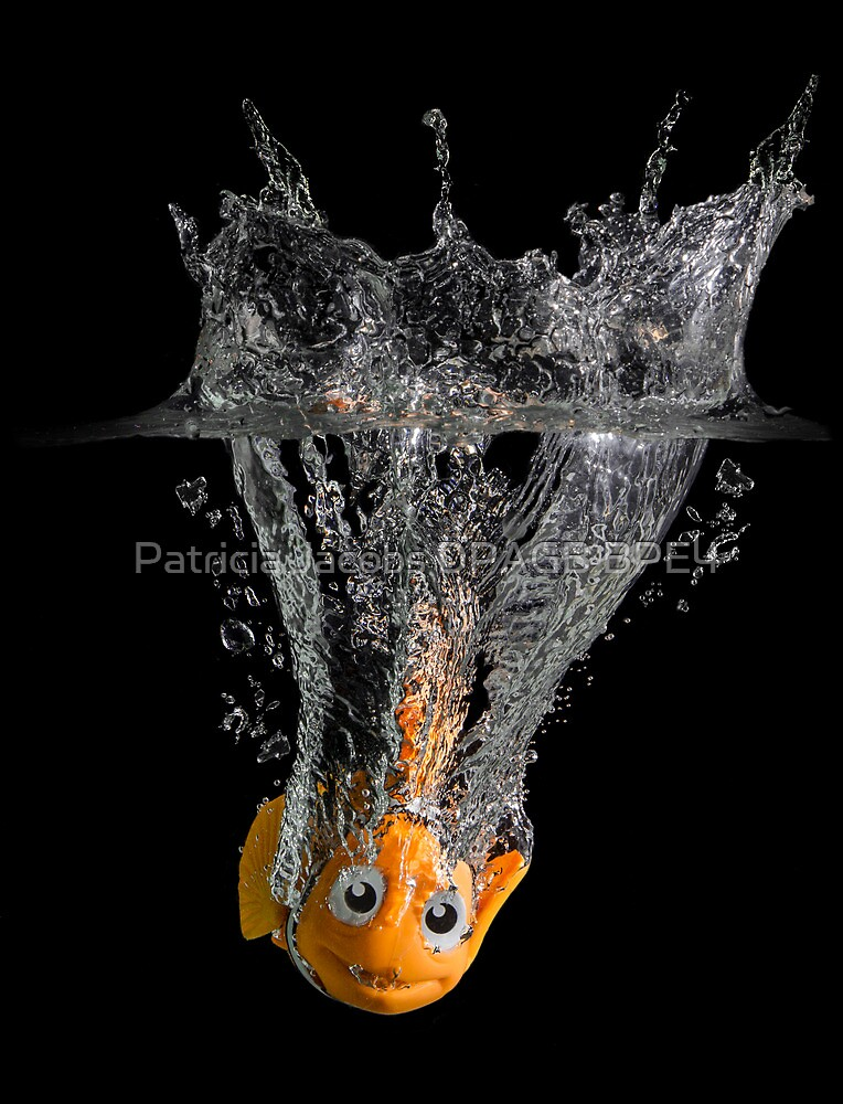 Falling Nemo by Patricia Jacobs DPAGB LRPS BPE4