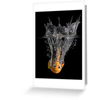 Falling Nemo Greeting Card