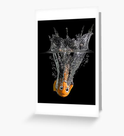 Falling Nemo Greeting Card