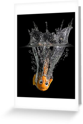 Falling Nemo by Patricia Jacobs CPAGB LRPS BPE4
