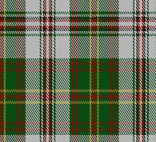 00095 Hay (White Dress) Clan Tartan Fabric Print Iphone Case by Detnecs2013