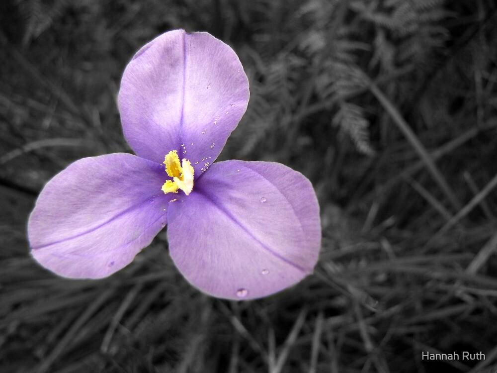 Black, White & Purple by Hannah Ruth